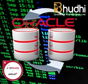 Oracle DB Professional